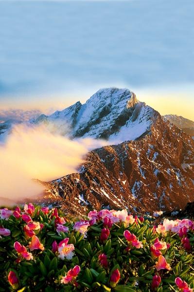 17玉山國家公園     品雪與雲海之美