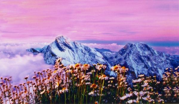 16玉山國家公園     品雪與雲海之美