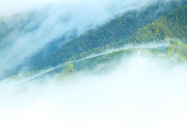 17二延平雲瀑二