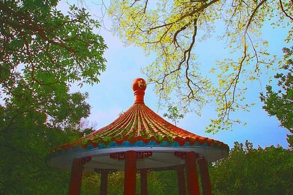 112014年陽明山花季