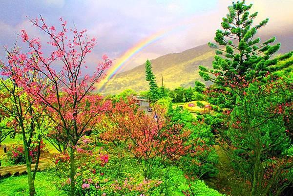 13陽明山花季2014
