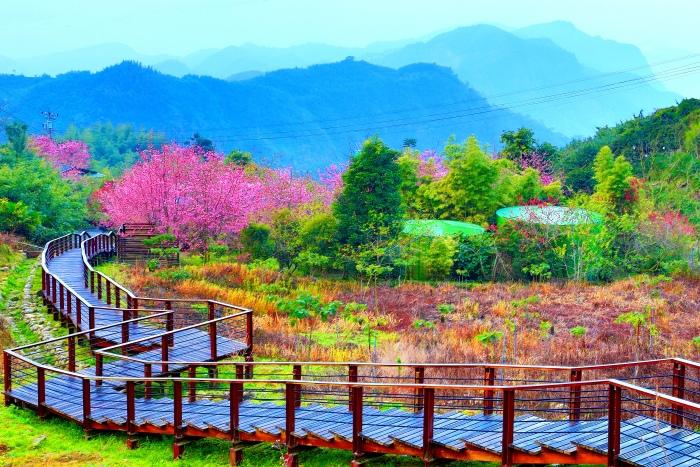 9春天看山雲之美_01