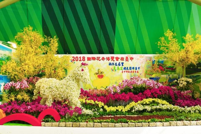 台南國際蘭展  (11)