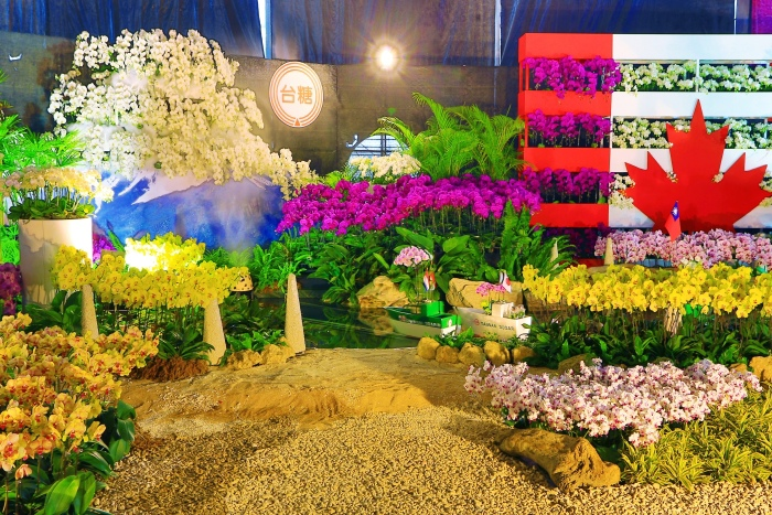 台南國際蘭展  (31)