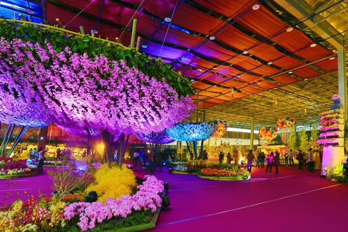 台南國際蘭展  (33)