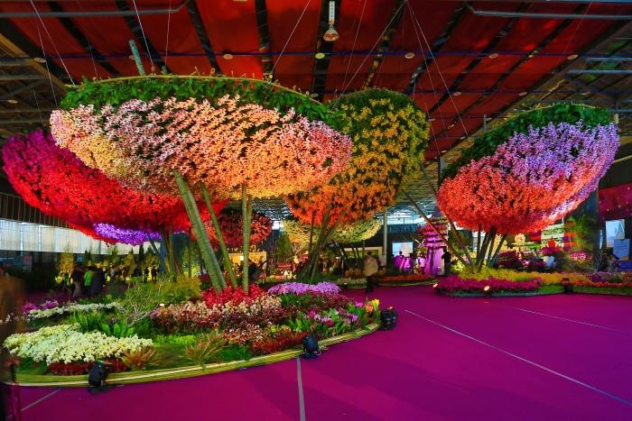 台南國際蘭展  (35)