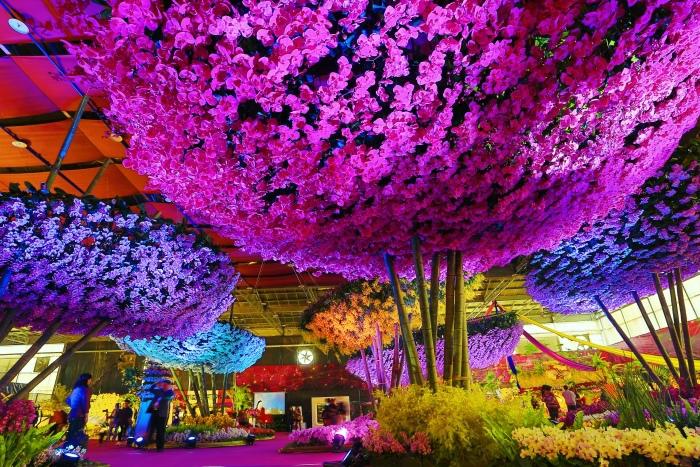 台南國際蘭展  (38)