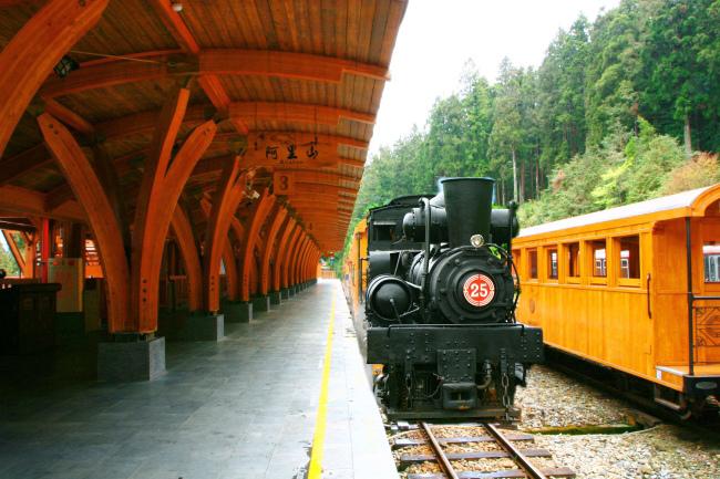 6 觀光森林火車  五