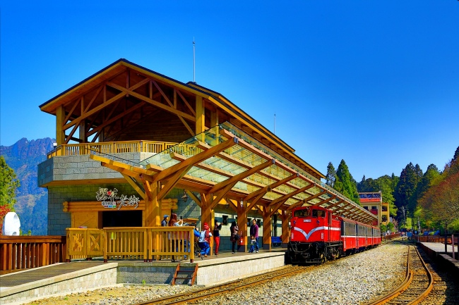 8觀光森林火車  五