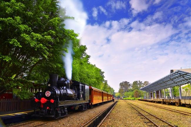 12觀光森林火車  五