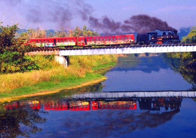 13觀光森林火車  五