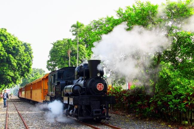 15觀光森林火車  五