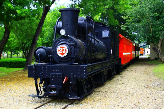 14觀光森林火車  五