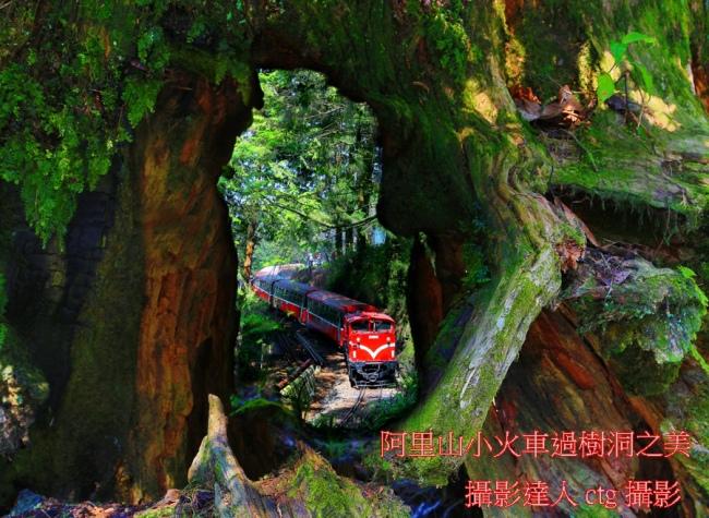 16 觀光森林火車  五