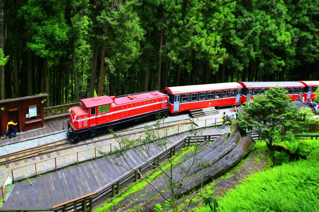 17觀光森林火車  五