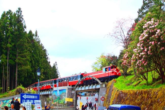 18觀光森林火車  五