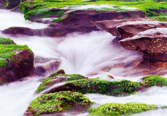 12老梅石槽碧綠的精靈