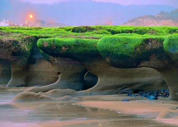 11老梅石槽碧綠的精靈