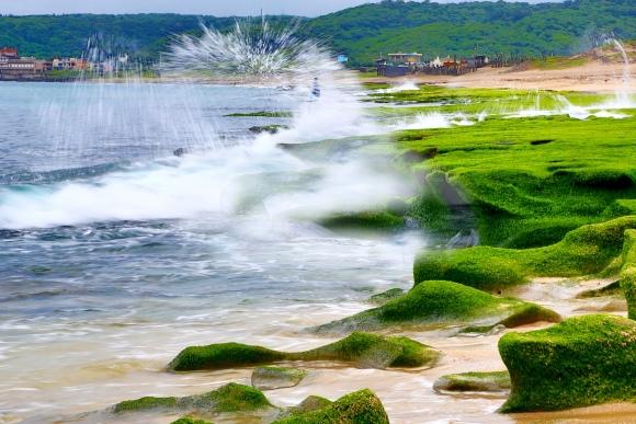 19老梅石槽碧綠的精靈