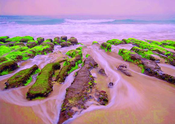 10老梅石槽碧綠的精靈