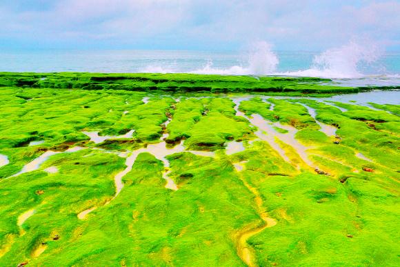 9老梅石槽碧綠的精靈