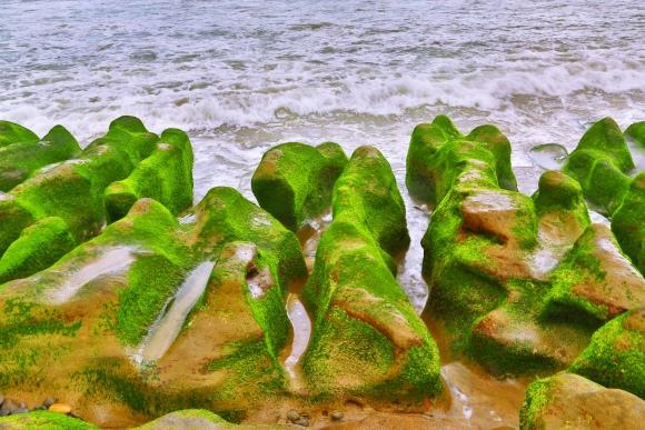 8老梅石槽碧綠的精靈