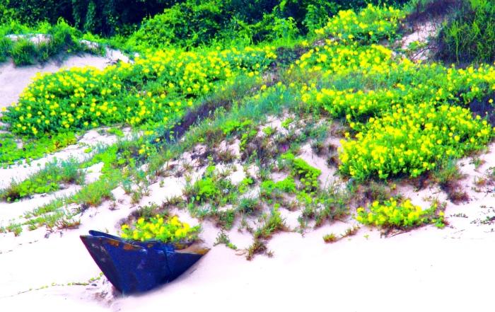 10金門濱海之美