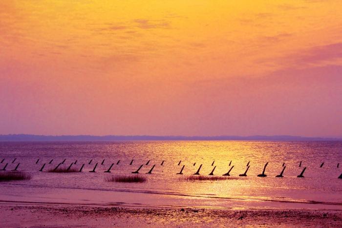 14金門海洋之美