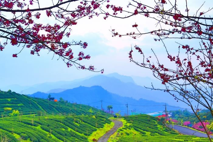 13對台灣山水美的情懷