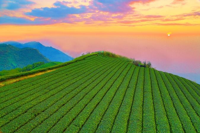 12對台灣山水美的情懷