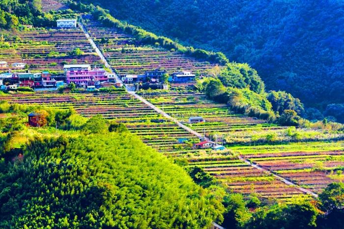 3對台灣山水美的情懷