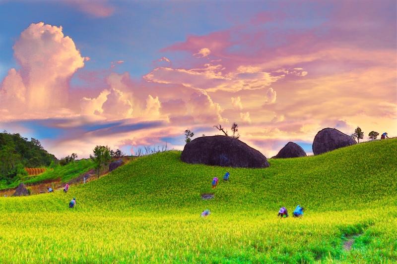 2花蓮赤柯山之美