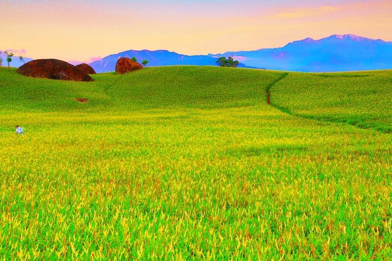 4花蓮赤柯山之美
