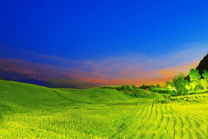 7花蓮赤柯山之美
