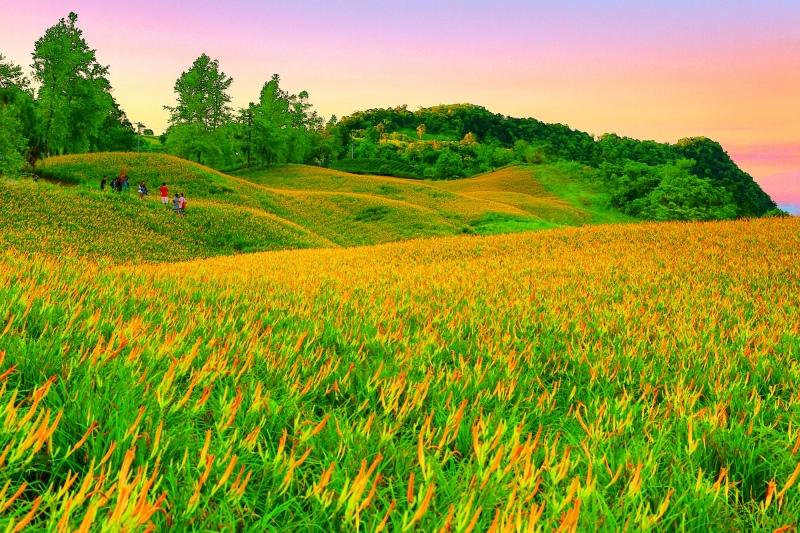 12花蓮赤柯山之美