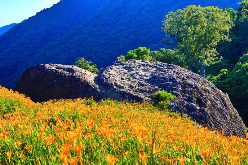 17花蓮赤柯山之美