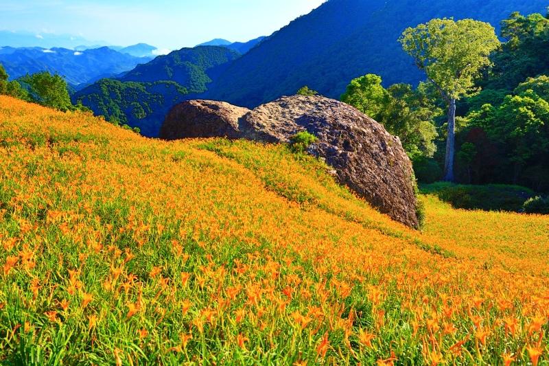 18花蓮赤柯山之美