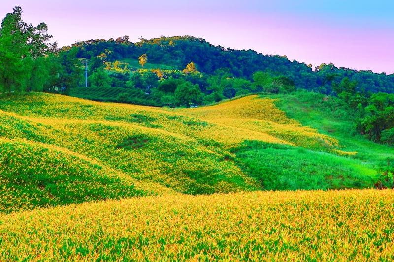 25花蓮赤柯山之美