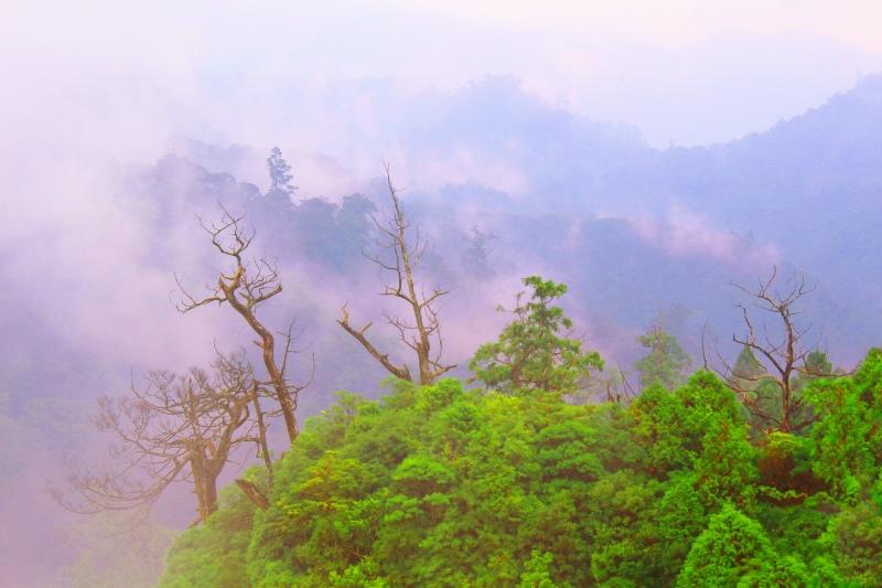 7台灣雲霧波光之美