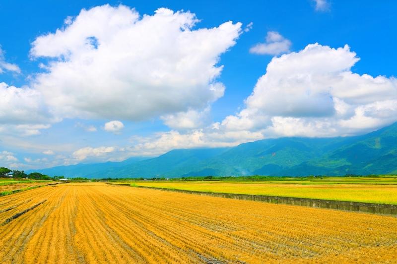 8花東縱谷田園景觀之美