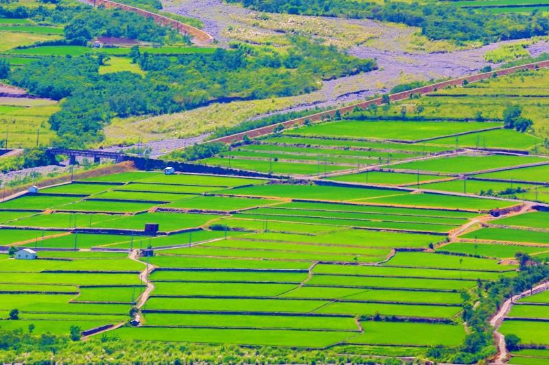 19花東縱谷田園景觀之美