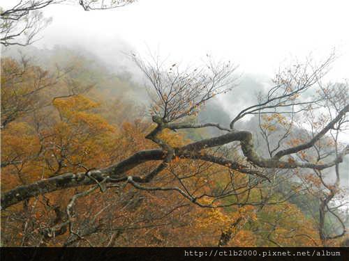 翠峰湖包車旅遊相片