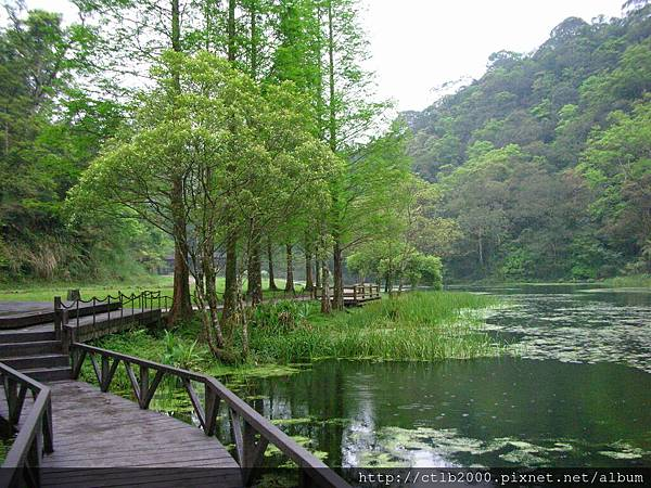 福山植物園4.jpg