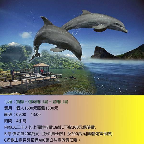 賞鯨3合1