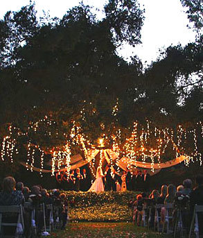 Wedding site: under the tree