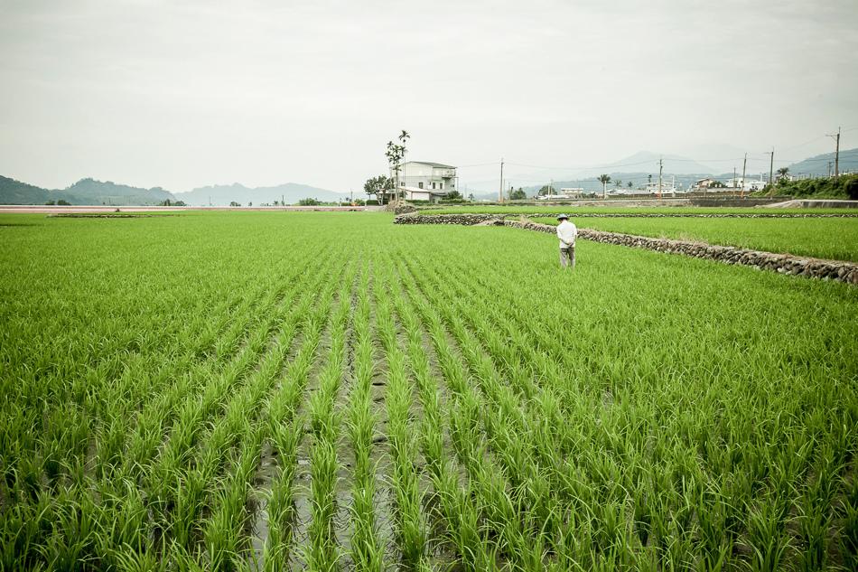 IMG環島_153.jpg