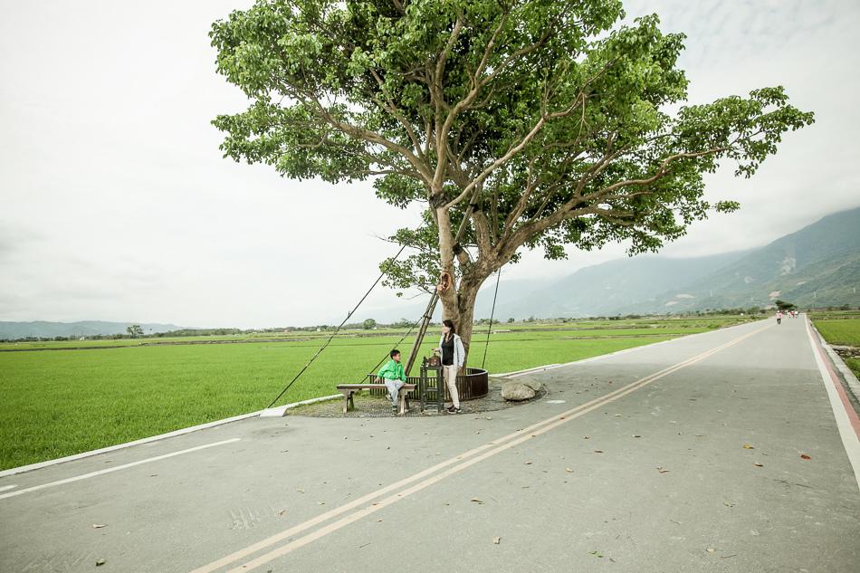 IMG環島_175.jpg