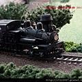 阿里山蒸汽火車 -- 25 號