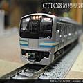 E217系 橫須賀線 (更新色)