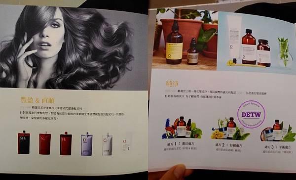 Bee hair (3).jpg